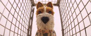 Isle of Dogs cine familiar infantil MODIband