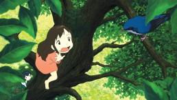 Wolf Children Hosoda MODIband cine infantil